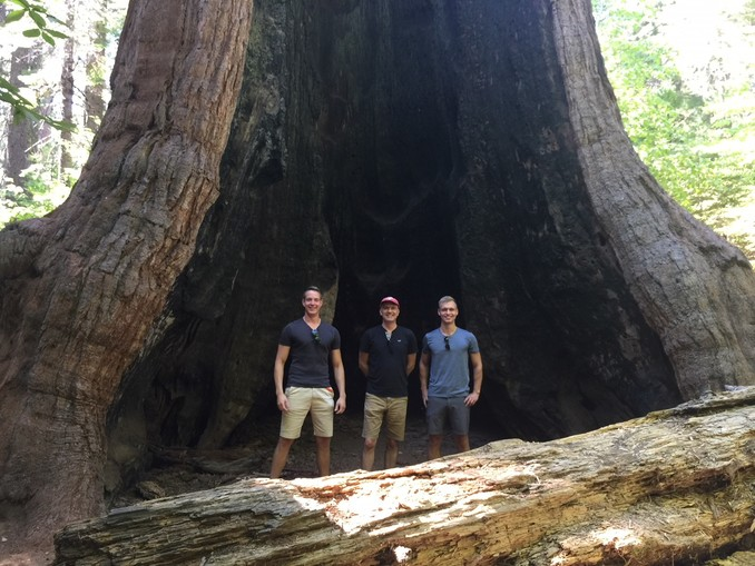 Holger Havlin, Prof. Dr. Harro Heilmann und Jan Gross im Calaveras Big Trees State Park in Kalifornien.
